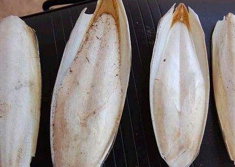 海螵蛸的副作用