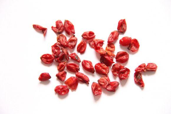 山茱萸的副作用