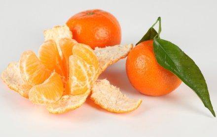 橘络的功能与主治