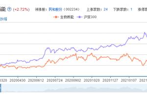 生物质能概念股票分析一览