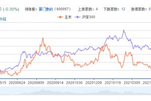 玉米概念股票分析一览