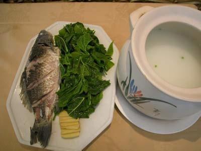 桑叶鲫鱼汤