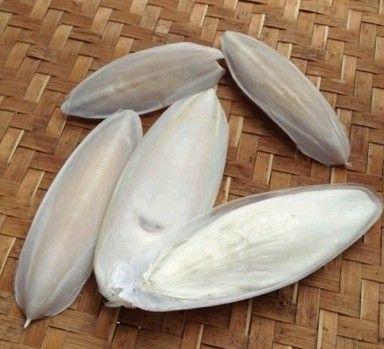 海螵蛸的食用方法
