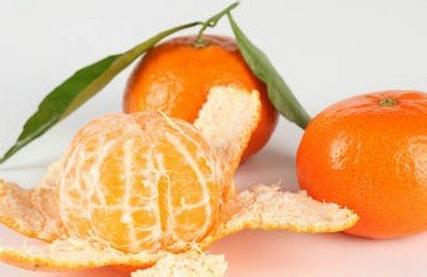 橘络的图片