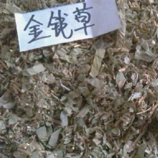 中草药金钱草图片