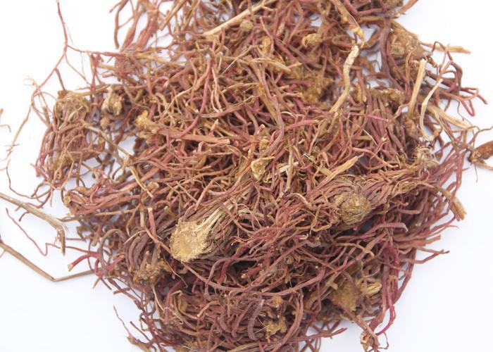 中药材紫菀图片